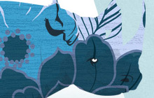 wallpaper_animals_thumb